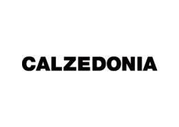 logo-_0016_Livello-2